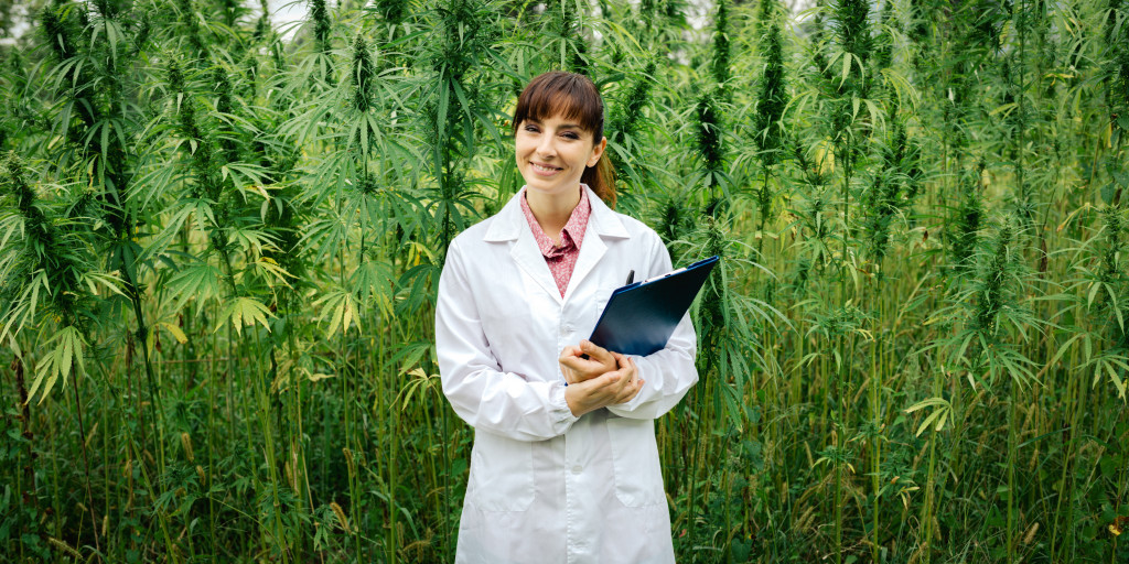 doctor near marijuana plants