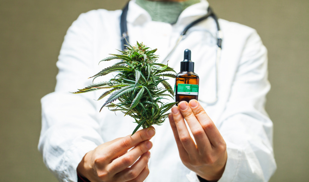 doctor holding marijuana plant